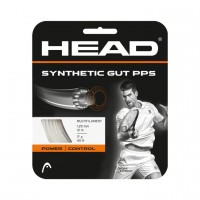 Head Synthetic Gut PPS 17 12m